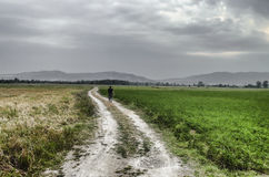 Pathway up the hill against the sky. Man ran away. Man walking on road. Field with green and yellow grass. Azerbaijan Royalty Free Stock Photo