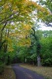 Pathway view at fall Royalty Free Stock Photo