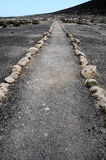 Pathway in the Volcanic Desert Stock Photo
