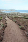 Pathway in the Volcanic Desert Royalty Free Stock Images