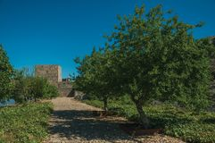 Pathway and wall in a lawn garden with trees at the Marvao Castle royalty free stock photography