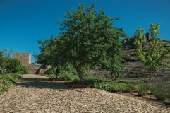 Pathway and wall in a lawn garden with trees at the Marvao Castle royalty free stock image