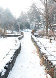 Pathway in the Winter Royalty Free Stock Images