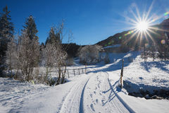 Pathway in winter wonderland on a bright sunny day. Pathway in dreamy winter wonderland on a bright sunny day in december royalty free stock images