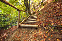 Pathway wooden stairs Stock Images