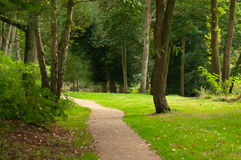 Pathway in woodland. Man-made pathway in a green woodland area Royalty Free Stock Photos