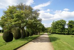 Pathway of a yew topiary garden in Yeovil, Somerset, England Stock Photo