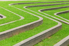Pathways with green lawns Stock Photography
