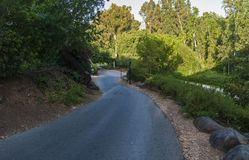 Pathways in a Nature Resort in Northern Israel royalty free stock photos