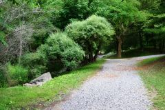 Pathways in the Park. Gravel Paths in Glenn Park in the Summer Royalty Free Stock Photography