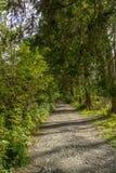 Pathways Stock Image