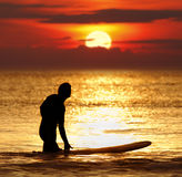Sunset surfer. Silhouette of a surfer with surfboard at sunset royalty free stock images