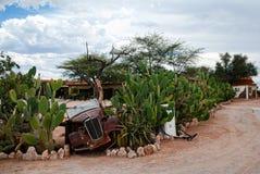 Patiens Namibia, Afrika Royaltyfri Fotografi
