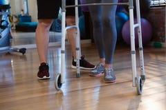 Patient de aide de physiothérapeute à marcher avec le cadre de marche dans la clinique image stock