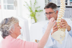 Patient looking at anatomical spine while doctor explaing her. Female patient looking at anatomical spine while doctor explaining her in clinic royalty free stock image