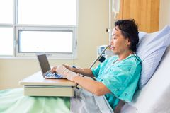 Patient Using Laptop On Bed In Hospital Royalty Free Stock Image
