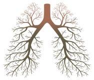 Patients de poumon illustration stock