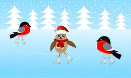 Patim da coruja e dos dois dom-fafe no gelo ilustração stock