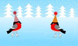 Patim de dois dom-fafe no gelo ilustração royalty free