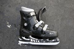 Patim de gelo Fotos de Stock