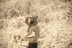 Patim feliz farpado da posse do homem na floresta nevado do inverno, Natal fotos de stock royalty free