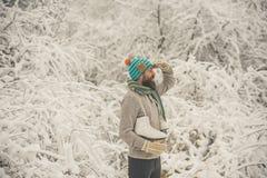 Patim feliz farpado da posse do homem na floresta nevado do inverno, Natal imagens de stock royalty free