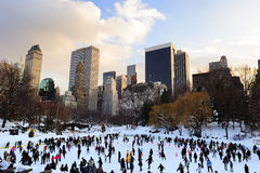 Patin de glace de New York City Central Park Photographie stock libre de droits