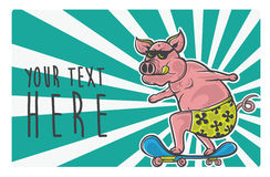 Patinador del cerdo Fotos de archivo libres de regalías