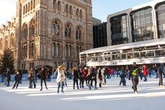 Patinaje de hielo en el museo de la historia natural Foto de archivo