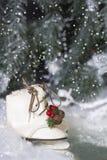 Patines de hielo de la Navidad 2 Imagen de archivo libre de regalías