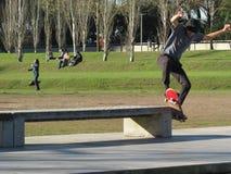 patineur Photo libre de droits