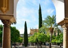 Patio énorme de la Mosquée-cathédrale à Cordoue Photographie stock libre de droits