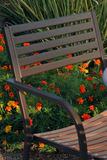 Patio chair and flowers. Orange flowers peeking through a brown patio chair; lots of greenery in background Royalty Free Stock Images