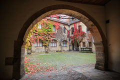 Patio with colorful vines and autumn leaves Stock Photo