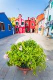 Patio con las casas coloridas en la isla de Burano, Venecia, Italia Foto de archivo libre de regalías