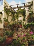 Patio con las plantas en potes y flores contra las paredes amarillas en Rethymno imagen de archivo
