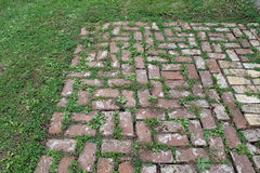 Patio de brique rouge avec l'herbe s'élevant entre les machines à paver Photos libres de droits