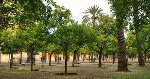Patio DE los Naranjos in Mezquita van Cordoba royalty-vrije stock afbeelding