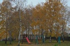 Patio de los niños entre los árboles de abedul en el tiempo del otoño Imágenes de archivo libres de regalías