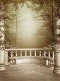Patio de marbre avec des vignes Images libres de droits