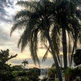 Patio de Miami Photos stock