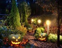 Patio del giardino con le Jack-o-lanterne Immagini Stock