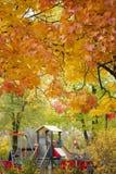 Patio del otoño Imágenes de archivo libres de regalías