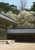 Patio del templo Imágenes de archivo libres de regalías