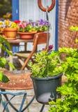 Patio domestico floreale fotografia stock libera da diritti