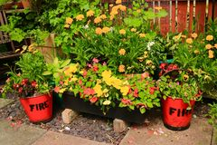 Patio Fire buckets and flowers royalty free stock images