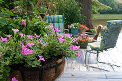 Patio flowers. Pink patio flowers and furniture Stock Image