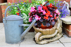 Patio flowers Stock Photography