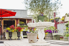 Patio kwiatu ogród Fotografia Stock