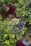 Patio marroquí Imagen de archivo libre de regalías